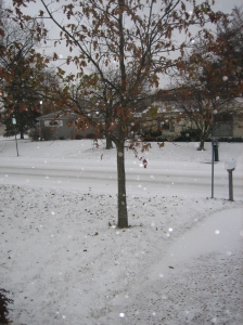 snow-009